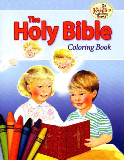 P-RL00-14Holy BibleCB