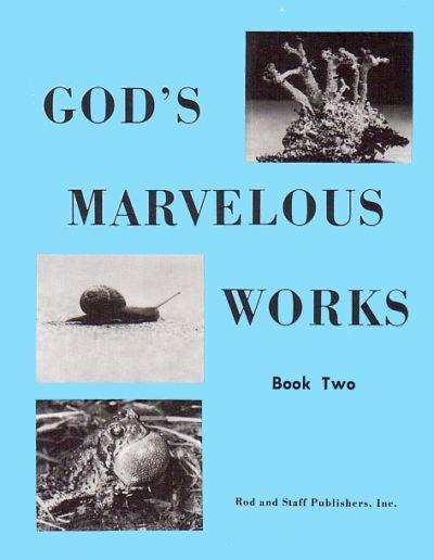 P-SC06-11GodsMarvelousWorksBook2